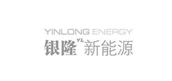 银隆新能源
